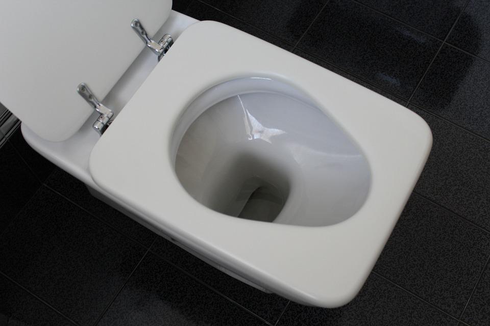 ome scegliere il sedile WC adatto al tuo bagno