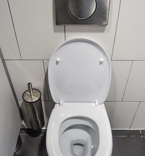 Scarico wc