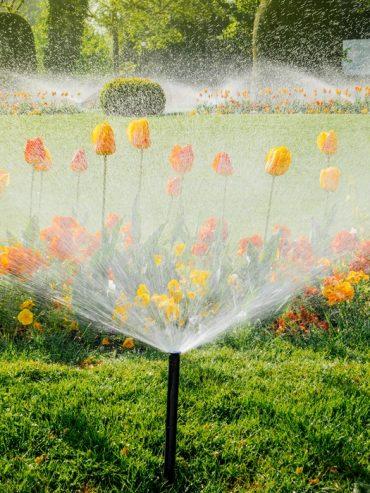 Bonus Verde con i sistemi di irrigazione Rain