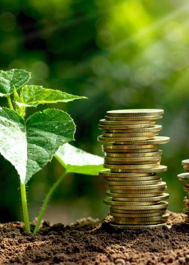 Bonus verde 2021 come funziona e quali sono i vantaggi